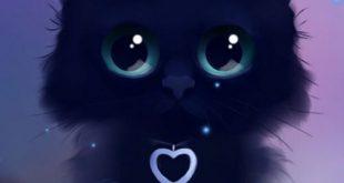 صور صور قطط كيوت , قطط كيوت و جميله جدا بالصور
