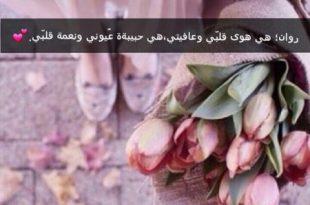 صور صور ورود حلوه , اجمل الورود بصور رائعه