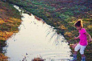 صورة صور جمال الطبيعة , الطبيعه و جمالها بالصور المميزه