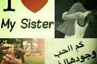 صورة اختي يا عمري كله , مسجات عن الاخت